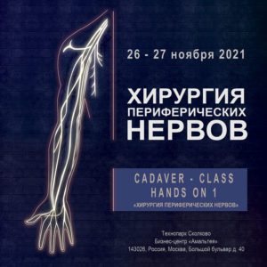 Cadaver — class Hands ON 1 «Хирургия периферических нервов»